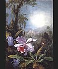 pas Canvas Paintings - Orchids Passion Flowers and Hummingbird