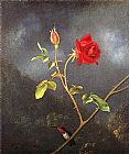 Rose Canvas Paintings - Red Rose with Ruby Throat