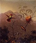 Martin Johnson Heade Tufted Coquette painting