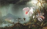 Martin Johnson Heade Two Fighting Hummingbirds with Two Orchids painting