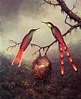Martin Johnson Heade Wall Art - Two Hummingbirds Garding an Egg