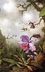 Martin Johnson Heade Wall Art - Two Hummingbirds and a PinkOrchid