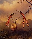 martin johnson heade Wall Art - Two Hummingbirds with Their Young