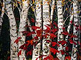 Maya Eventov Famous Paintings - Canadian Fall
