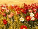 Shirley Novak Poppies Make Me Happy painting