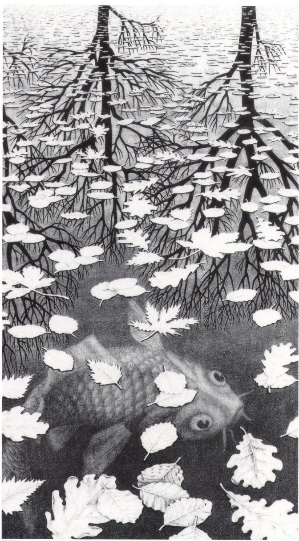 Unknown Artist Mc Escher Three Worlds Painting Framed