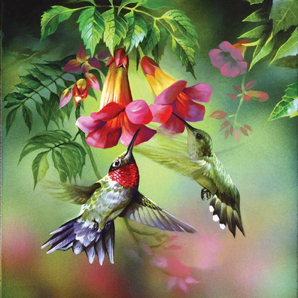 Unknown Artist hummingbirds painting | framed paintings ...