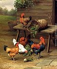 Art Canvas Paintings - Chickens art