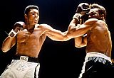 Unknown Artist Muhammad Ali Boxing Fights painting