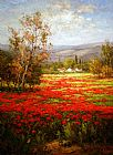 Famous Field Paintings - Poppy Field Splendid Pathway