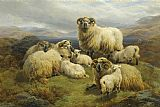 Unknown Artist Sheep in the Highlands painting