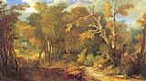 Unknown Artist Wooded Landscape painting