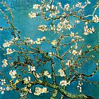 Vincent van Gogh Almond Branches in Bloom 1 painting