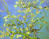 Famous Tree Paintings - Branches of Almond tree in Bloom