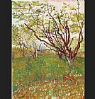 Famous Tree Paintings - Cherry Tree