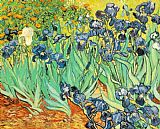 Vincent van Gogh Irises painting