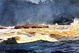 Fishing Canvas Paintings - Fishing the Rapids Saguenay