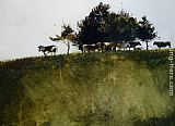 Andrew Wyeth - Shadey Trees