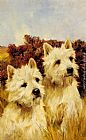 Arthur Wardle - Jacque and Jean, Champion Westhighland White Terriers