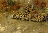 Arthur Wardle - Study Of East African Leopards