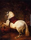 Horse Wall Art - The White Horse