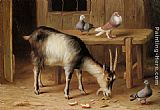 Edgar Hunt - A Goat and Pigeons In a Farmyard