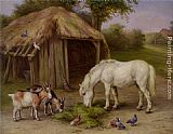 goat Wall Art - Pony and Goats in a Farmyard