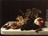 Emilie Preyer - Grapes Acorns and Apricots on a Marble Ledge