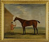 Horse Wall Art - Portrait of Henry Comptons Race Horse Highflyer Held by a Groom