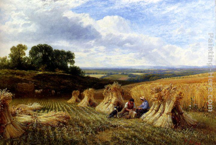 George Cole Snr Harvest Field