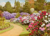 George Marks The Rhododendron Walk painting