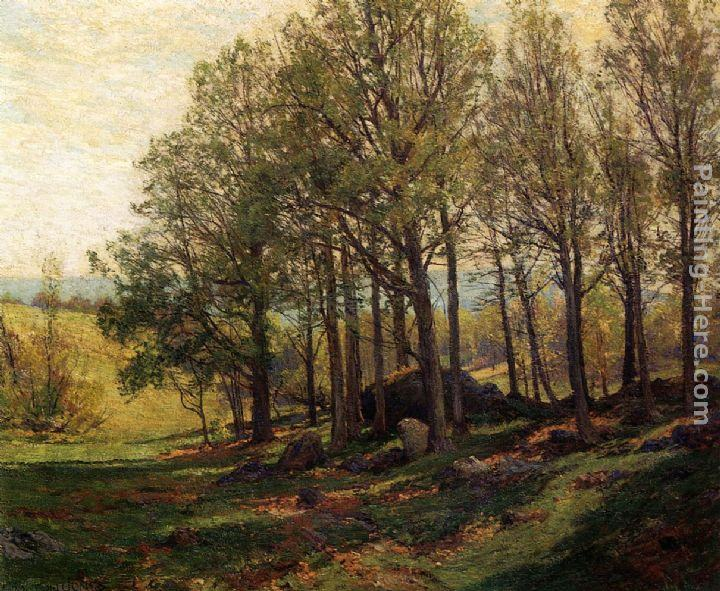 Hugh Bolton Jones Maples in Spring