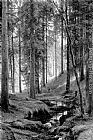 Ivan Shishkin - Stream by a Forest Slope
