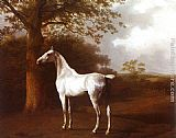 Famous Horse Paintings - White Horse in Pasture