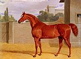 John Frederick Herring Snr - A Chestnut Racehorse in a Stable Yard