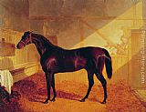 Charles Wall Art - Mr Johnstone's Charles XII in a Stable
