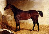 John Frederick Herring, Jnr - Flexible, A Chestnut Racehorse In A Loose Box