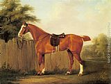 John Nost Sartorius - A Chestnut Hunter Tethered to a Fence