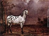Horse Wall Art - The Spotted Horse