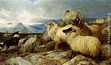 Richard Ansdell - Herding the Flock