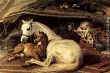 Sir Edwin Henry Landseer - The Arab Tent