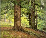 Famous Trees Paintings - Beech Trees