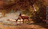Deer in a Landscape