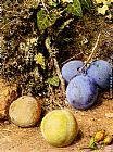 William Henry Hunt - Still Life With Greengages And Plums On A Mossy Bank