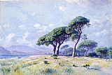 William Stanley Haseltine - Cannes