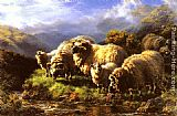 William Watson - Morning sheep grazing in a Highland Landscape