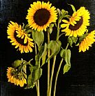 David Hardy Sunflowers painting