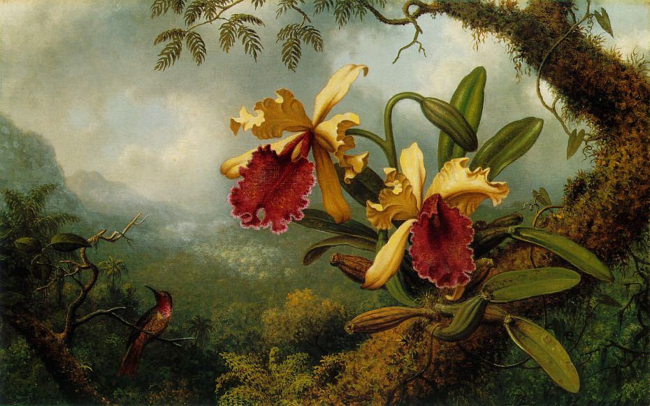 martin johnson heade famous paintings