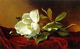Famous Red Paintings - A Magnolia on Red Velvet