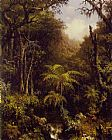 Forest Canvas Paintings - Brazilian Forest